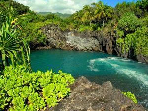 Venice_Falls_Maui_Hawaii