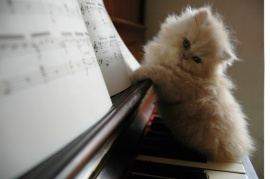 Kitty on a Piano