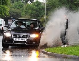 Roxy - Audi-Puddle