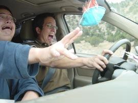 Roxy - Screaming in Car