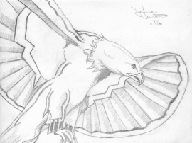 Jaimie_Sketch2_eagle