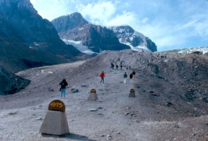 icefield 1975
