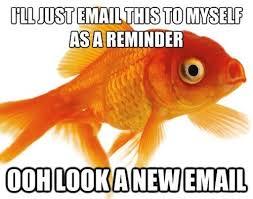 goldfish email
