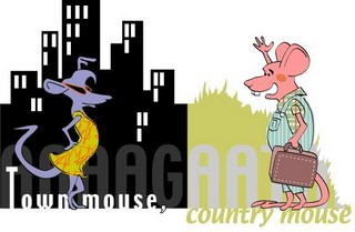 country_mouse_city_mouse
