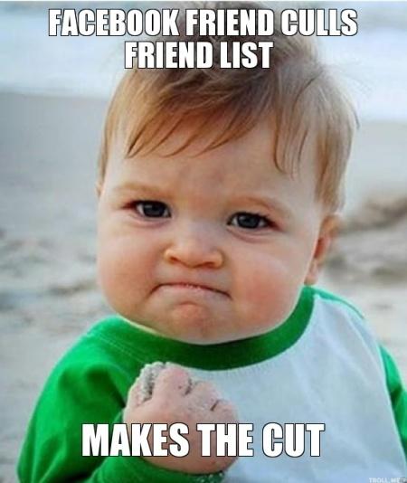 facebook-friend-culls-friend-list-makes-the-cut