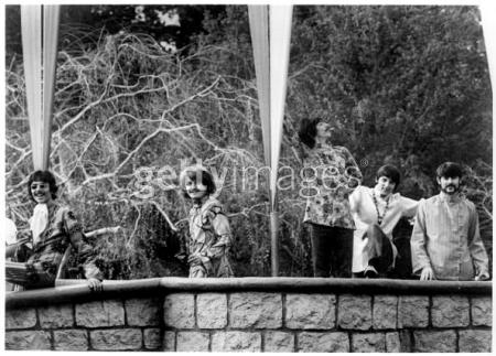 Family Tree Disneyland