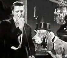 elvis hound dog