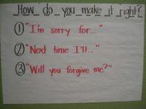 apologies 101