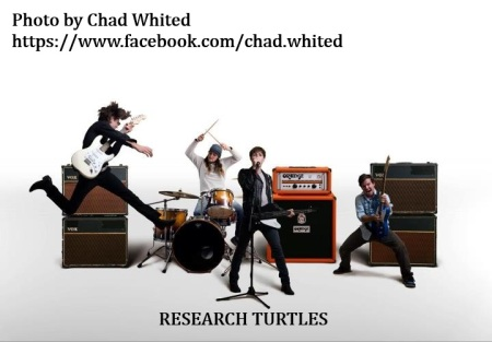 researchturtlespromowhited1