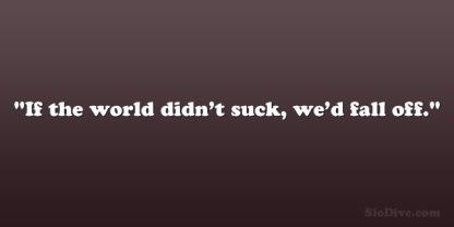 The World Sucks