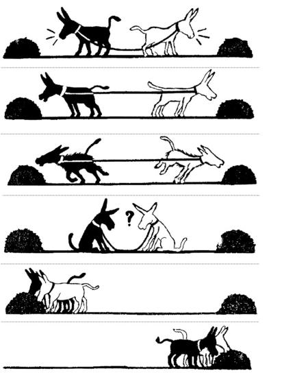 coopération 2