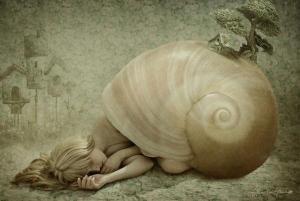 snailhome