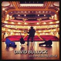 davidbullockwakingworldalbumcover