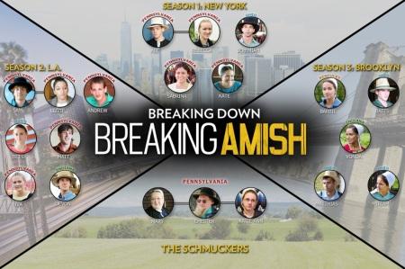 breakingamish