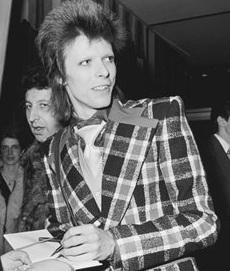 Bowie Plaid