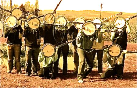 Summer banjos