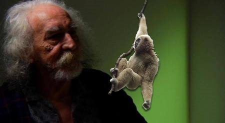 Bob and the Shitgibbon