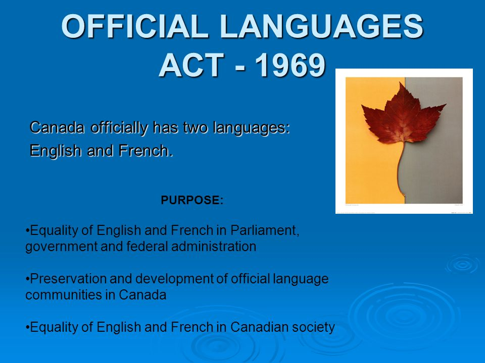 Peter gets and gives good advice about making decisions ones voicemail message had to be bilingual englishfrench or it was in violation of the official languages act he would have no part of it m4hsunfo